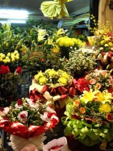 night flowers3